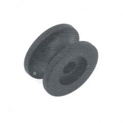 Champignon noir